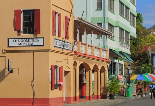 دریافت پاسپورت دومینیکا ، مراحل دریافت پاسپورت دومینیکا ، چطور پاسپورت دومینیکا بگیریم